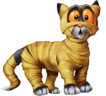 CatWrap_HR